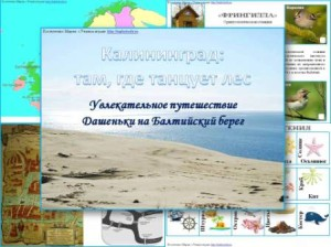 тематический комплект игр Калининград