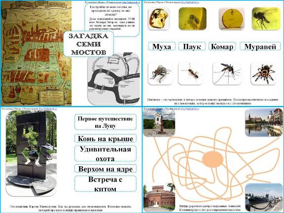 тематические игры Калининград
