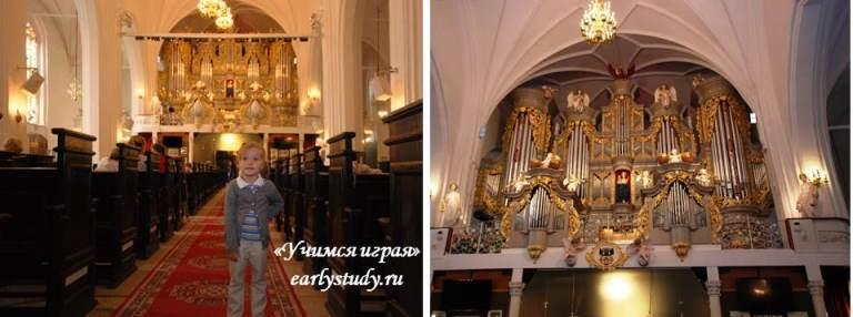 кафедральный собор. органный концерт