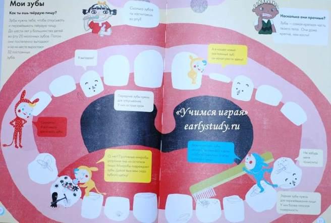 игры Наши зубы