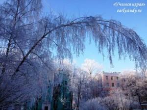 Зимняя звуковая охота