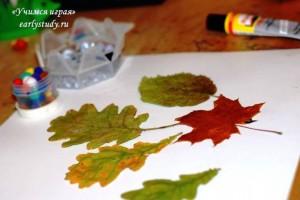 Творчество с осенними листьями