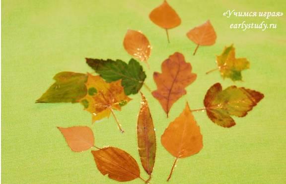 Творчество с осенними листиками