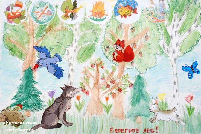 Берегите природу и лес