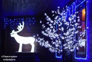 Новый год на ферме «Северный олень»